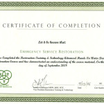RTT_Certification2-large
